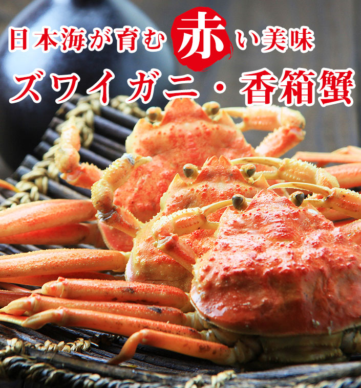 加能ガニ(ズワイガニ)・香箱蟹